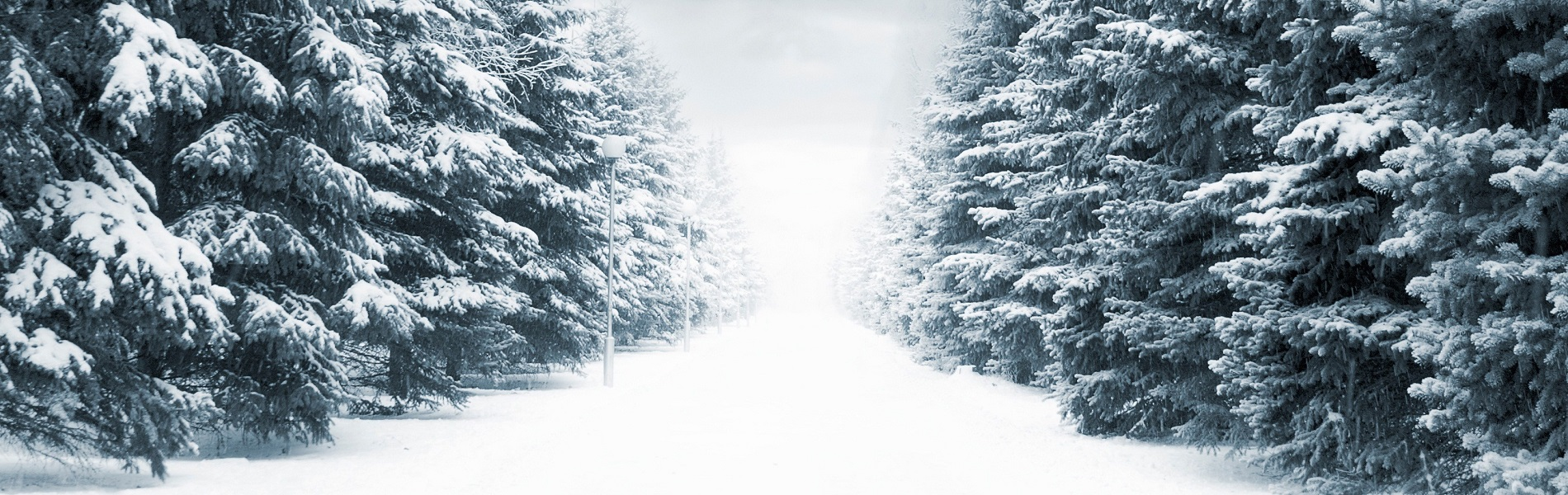 6910892-winter-snow-hd-backgrounds