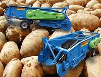 KRUKOWIAK - Ziemniaki